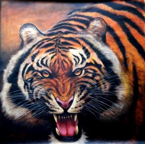 O.M.O., Tiger Growl 2009, Oil on Canvas, 76x76